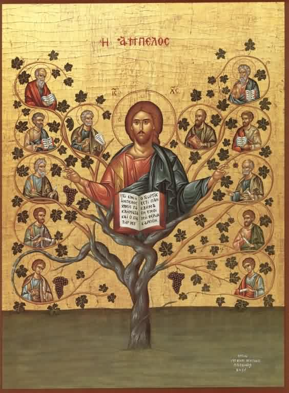 'I am the vine, ye are the branches'