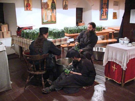 Conservation of cucambers, Visoki Decani Monastery monks, Serbia