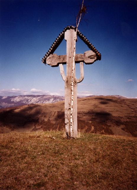 Golgotha Cross (birch tree)